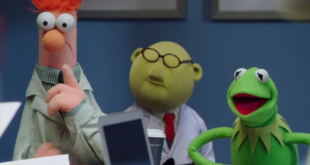 the muppets abc cover